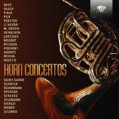Horn Concerto No. 2 in D Major, Hob. VIID:3: III. Allegro