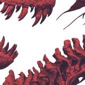 Animalweapon - The Pinch