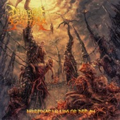 Defleshed And Gutted - Hibernaculum of Decay