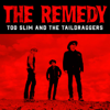 Too Slim and the Taildraggers - The Remedy  artwork
