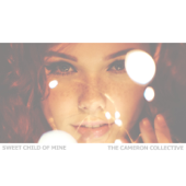 Sweet Child of Mine - The Cameron Collective