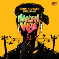 Ribin Richard & Thirumali - Naadan Vibe - Single artwork
