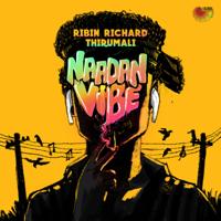 Ribin Richard & Thirumali - Naadan Vibe