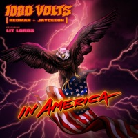 In America - 1000VOLTS - LIT LORDS