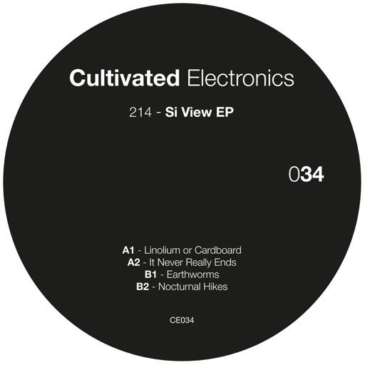 Si View - EP by 214