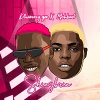 Dhammy Gee & MohBad - Shingbain - Single