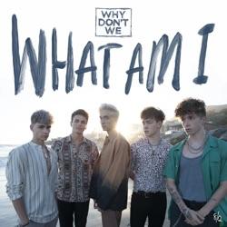 View album What Am I - Single