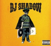 DJ Shadow - Outsider Intro