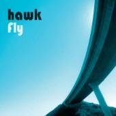 Hawk - I Believe in You