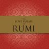 Nader Khalili - The Love Poems of Rumi (Unabridged)  artwork