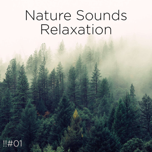Nature Sounds Nature Music & Nature Sounds - !!#01 Nature Sounds Relaxation