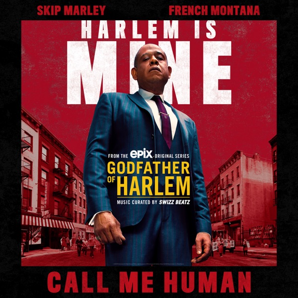 Call Me Human (feat. Skip Marley & French Montana) - Single