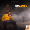 Big Zulu - Vuma Dlozi (feat. Mnqobi Yazo) artwork