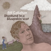 Bill Callahan - The Ballad of the Hulk
