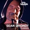 Sean Dhondt - Flamingo (Uit Liefde Voor Muziek) artwork