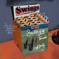 Swings - TOCCHI