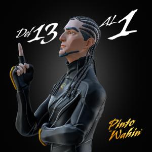 """Pinto """"Wahin"""" - Del 13 al 1"""