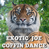 Exotic Joe - Coffin Dance artwork