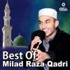 Best of Milad Raza Qadri