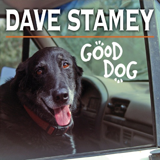 Art for Good Dog by Dave Stamey