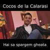 Cocos de la Calarasi - Hai Sa Spargem Gheata artwork
