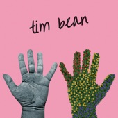 Tim Bean - Wasted Days