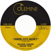 Delvon Lamarr Organ Trio - Inner City Blues