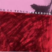 Yo La Tengo - You Tore Me Down
