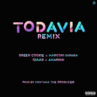 Todavía Remix (feat. Amarion) - Single