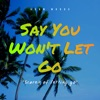 Say You Won't Let Go (Scared of Letting Go) by Adam Woods iTunes Track 1