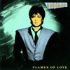 Fancy - Flames of Love artwork