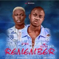 Dre Lamani - Remember (feat. Mohbad) - Single