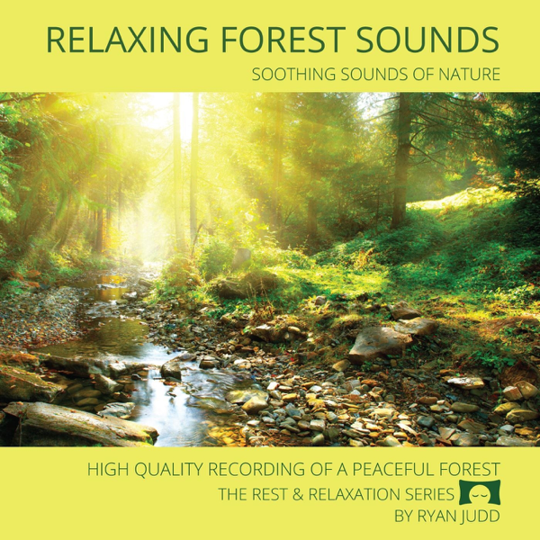 Relaxing Forest Sounds - Soothing Sounds of Nature by Ryan Judd