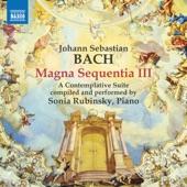 Liebster Jesu, wir sind hier, BWV 731 (Arr. for Piano) artwork