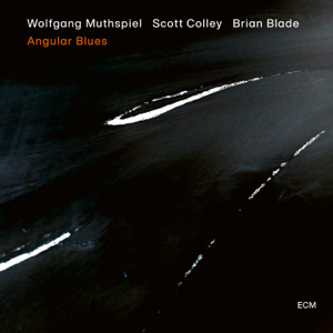 Wolfgang Muthspiel, Scott Colley & Brian Blade - Angular Blues