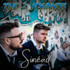 The 2 Johnnies - Sinéad artwork