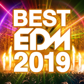 BEST EDM 2019 - Various Artists Cover Art