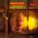 James Last & Gheorghe Zamfir - Einsamer Hirte