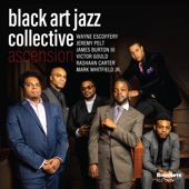 Black Art Jazz Collective - No Words Needed