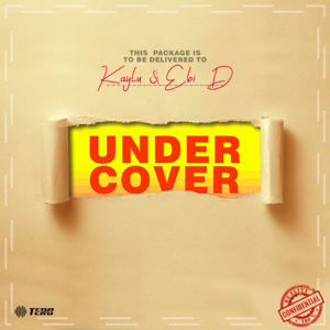 Kaylu - Undercover (with Ebi D)