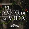 El Amor de Mi Vida - Single