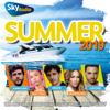Verschillende artiesten - Summer 2019 (Sky Radio Zomer) kunstwerk