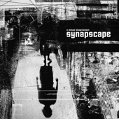 Synapscape - What Are We Doing