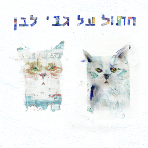 קרן ותמוז - חתול על גבי לבן