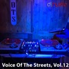 Voice of the Streets, Vol. 12 (DJ Mix)