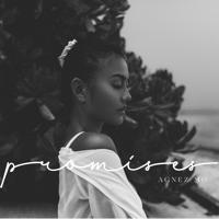 Lagu mp3 AGNEZ MO - Promises - Single baru, download lagu terbaru