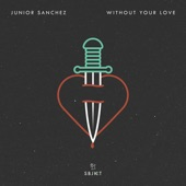 Without Your Love artwork
