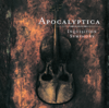 Apocalyptica - Nothing Else Matters Grafik