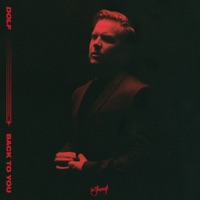 Back to You - DOLF