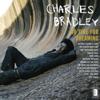 Charles Bradley - Stay Away (feat. Menahan Street Band) artwork